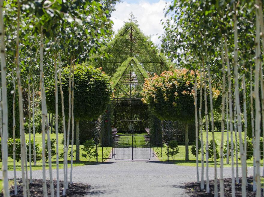 living-growing-instalation-tree-church-barry-cox-7