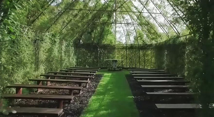 living-growing-instalation-tree-church-barry-cox-9