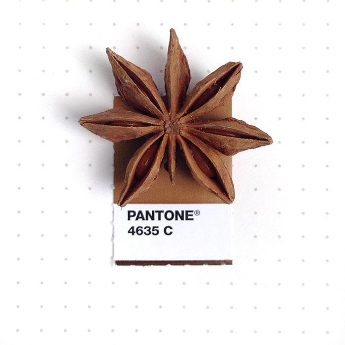 pantone-matches-tiny-pms-match-inka-mathew-14