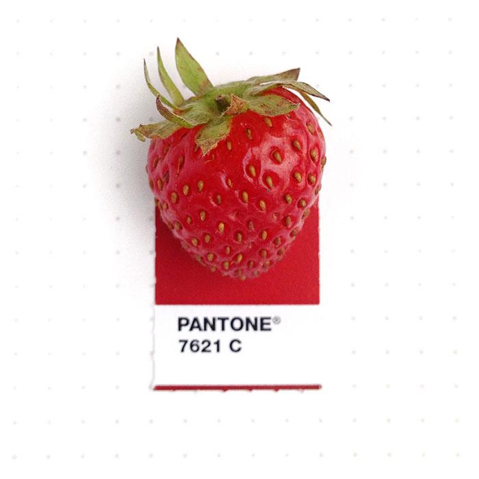 pantone-matches-tiny-pms-match-inka-mathew-63