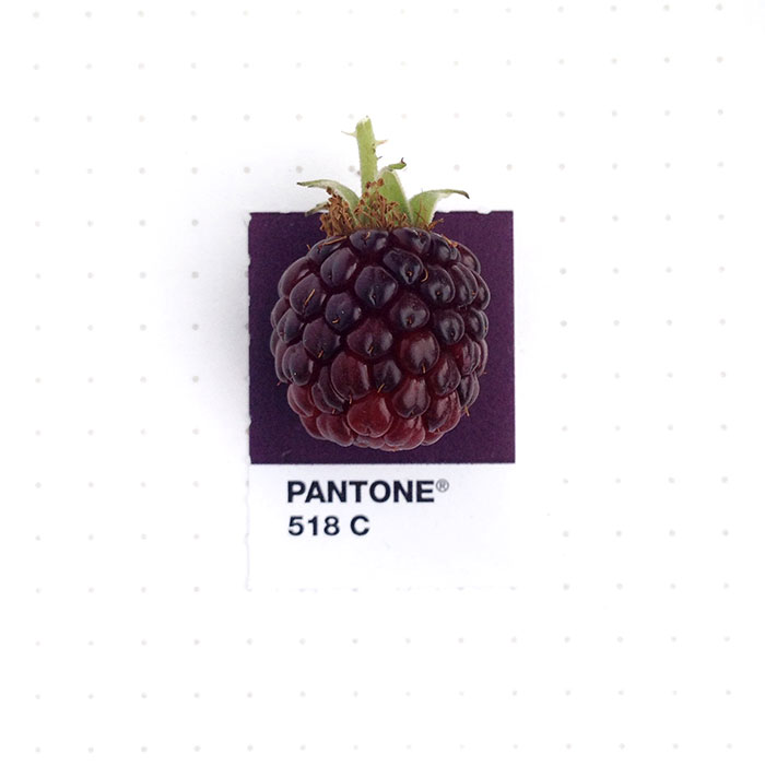pantone-matches-tiny-pms-match-inka-mathew-64