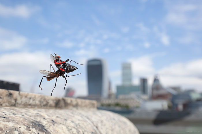 tiny-superhero-model-antman-movie-instalation-slinkachu-8