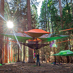 New Suspended Tree Tents Are Better Than Home & Modular POD Tents Connect To Build A Tent Town