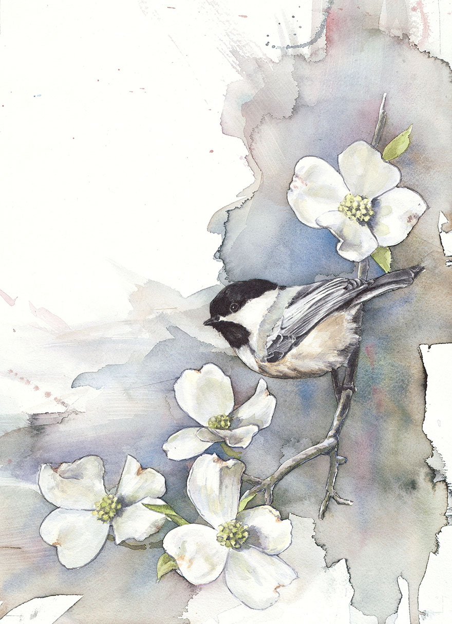 Biologist By Day Paints Watercolor Birds By Night Demilked
