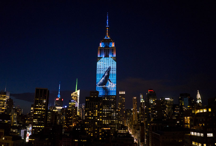 cecil-lion-endangered-species-projecting-change-empire-state-building-obscura-digital-10