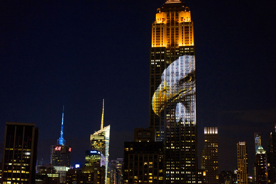 cecil-lion-endangered-species-projecting-change-empire-state-building-obscura-digital-19
