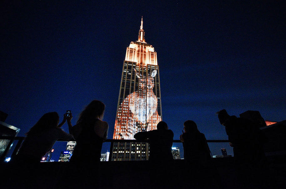 cecil-lion-endangered-species-projecting-change-empire-state-building-obscura-digital-26