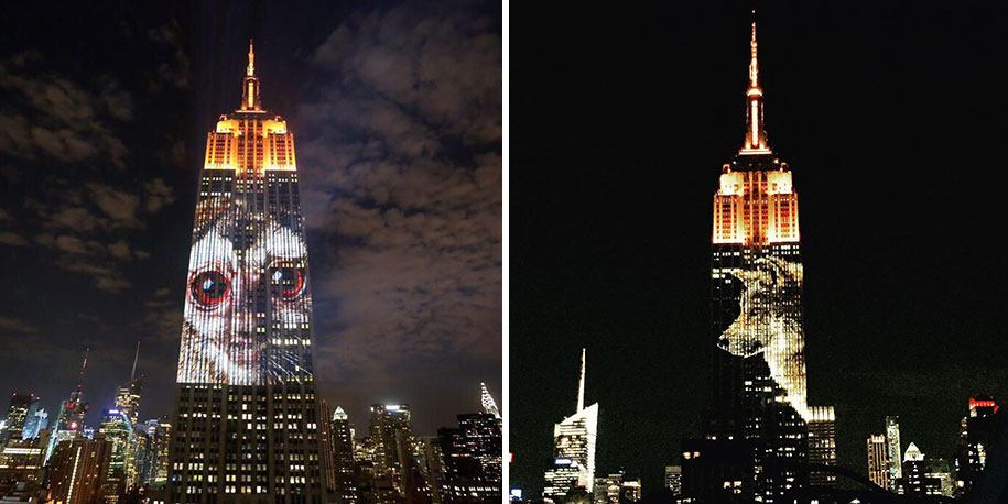 cecil-lion-endangered-species-projecting-change-empire-state-building-obscura-digital-27