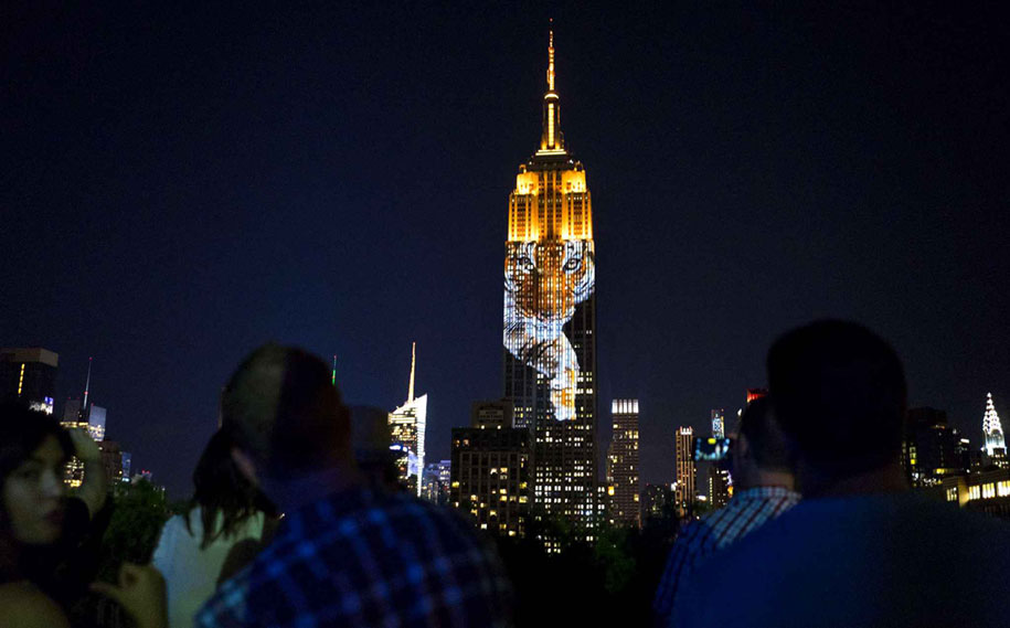 cecil-lion-endangered-species-projecting-change-empire-state-building-obscura-digital-8