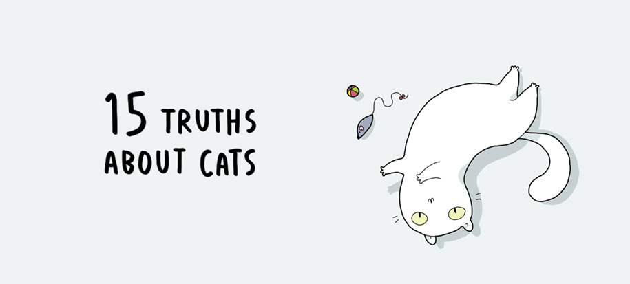 funny-15-illustrated-cat-truths-lingvistov-1