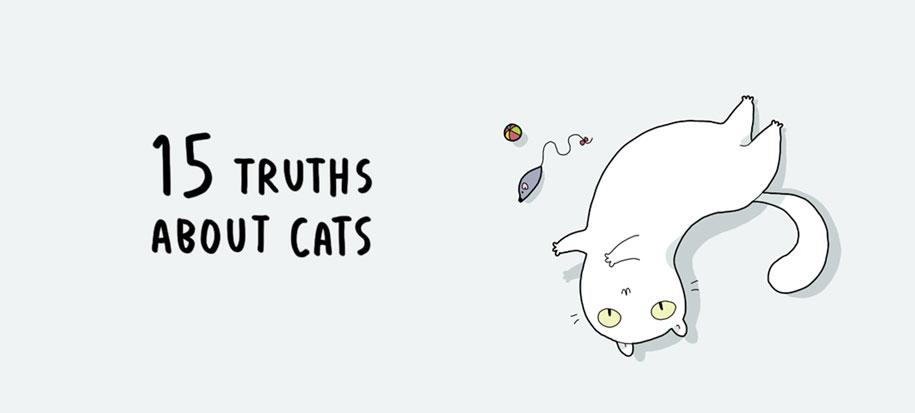 funny-15-illustrated-cat-truths-lingvistov-1