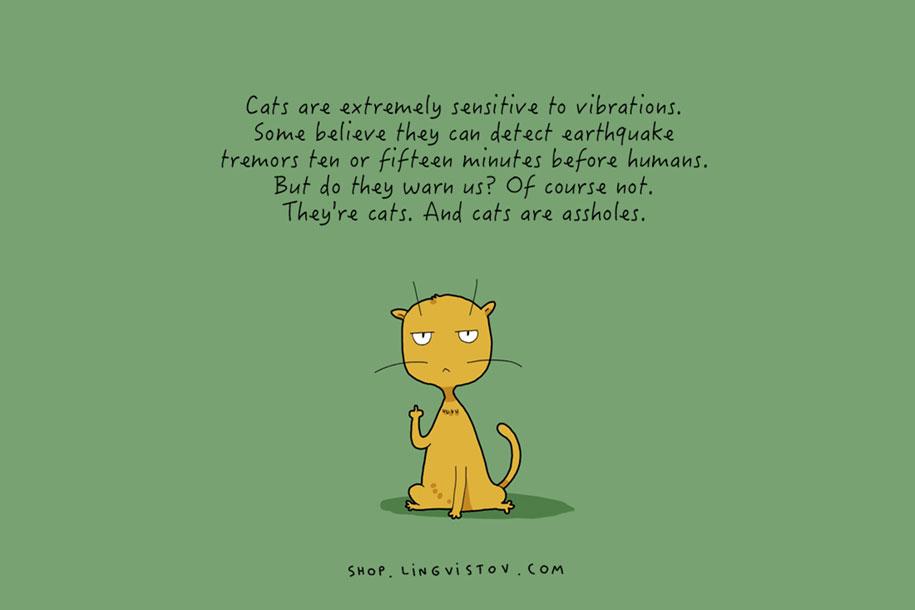 funny-15-illustrated-cat-truths-lingvistov-12