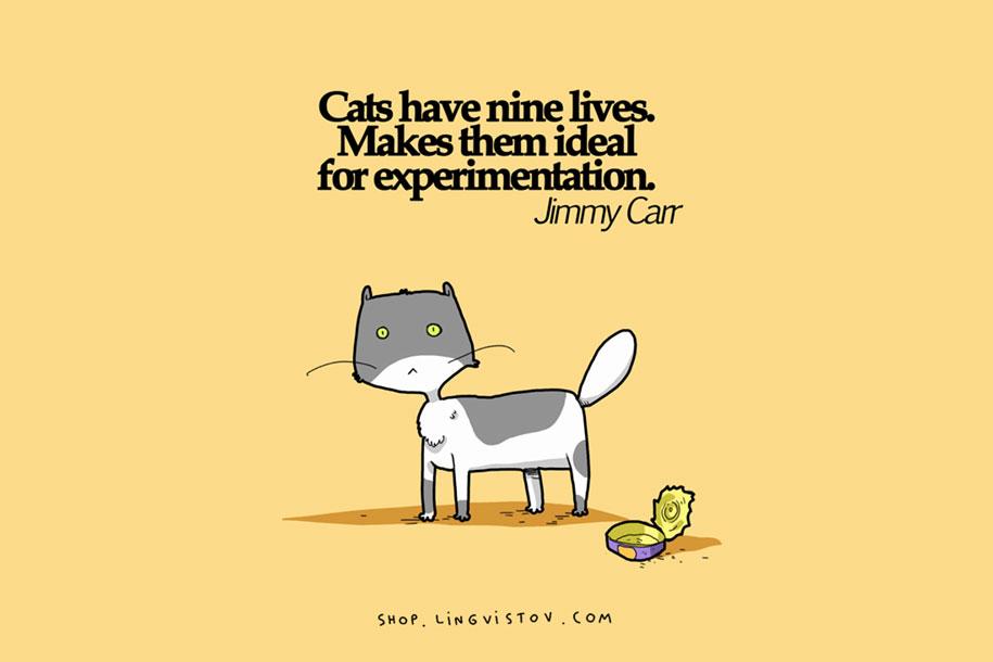 funny-15-illustrated-cat-truths-lingvistov-13