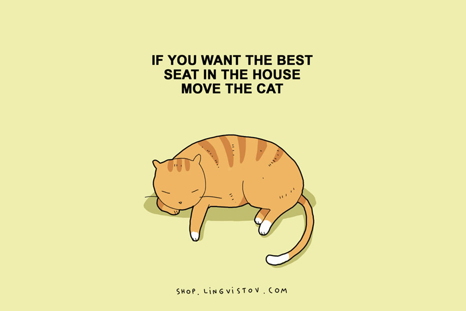 funny-15-illustrated-cat-truths-lingvistov-2