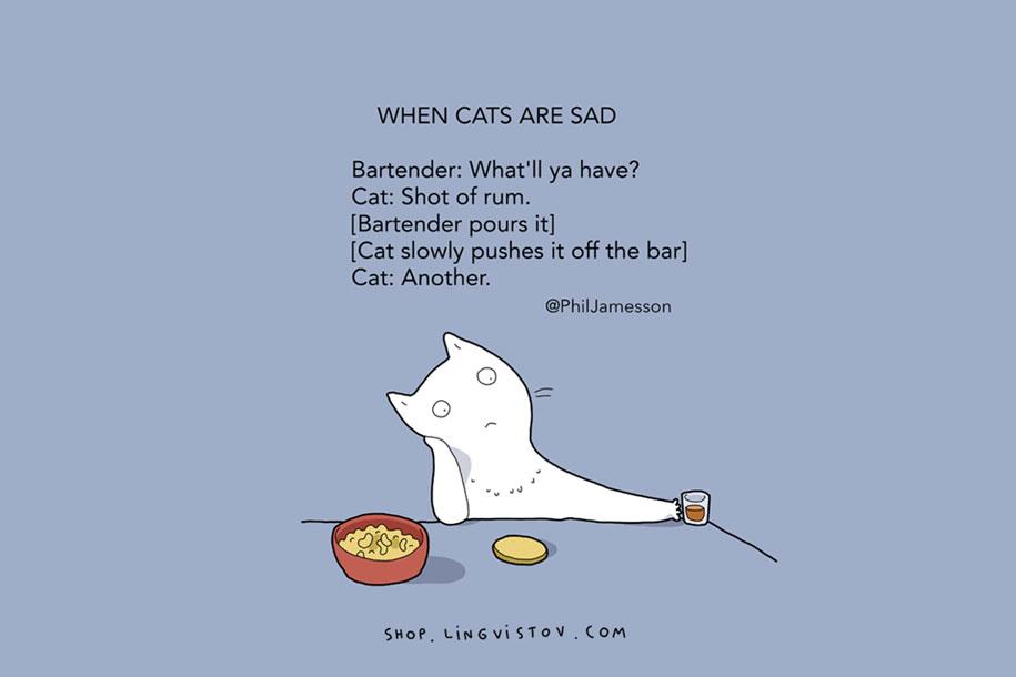 funny-15-illustrated-cat-truths-lingvistov-8
