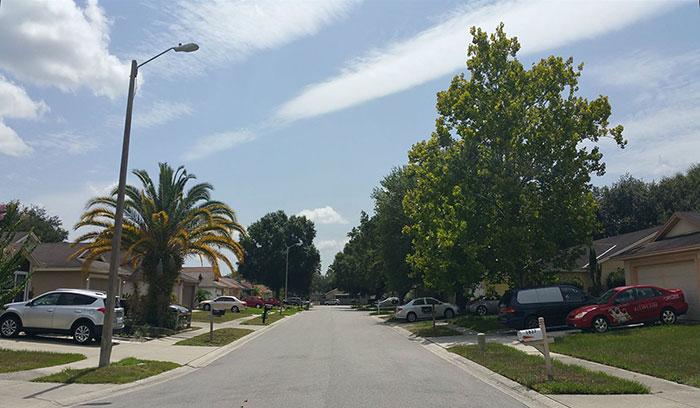 movie-locations-edward-scissorhands-suburb-now-then-pictures-voodrew-7-2