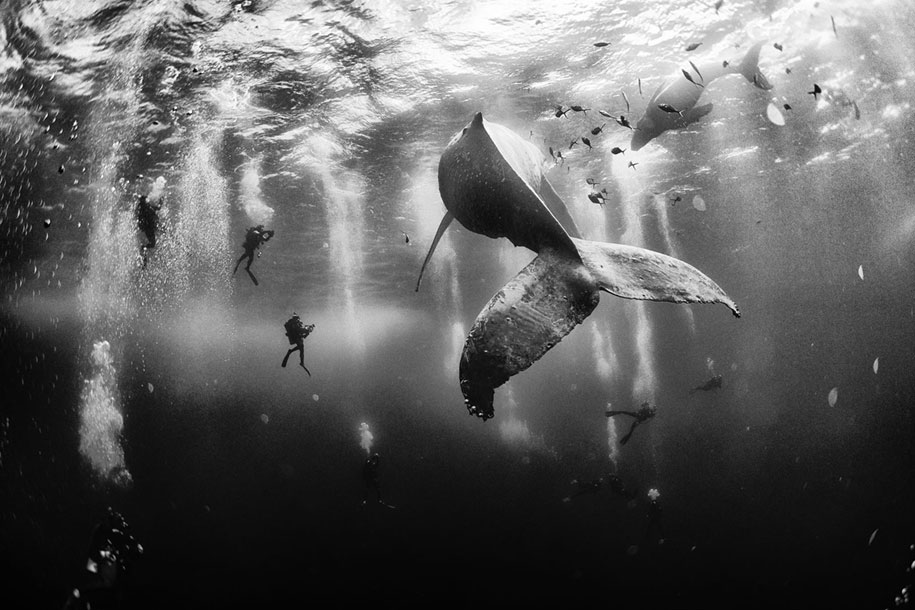 nature-winners-2015-national-geographic-traveler-photo-contest-10