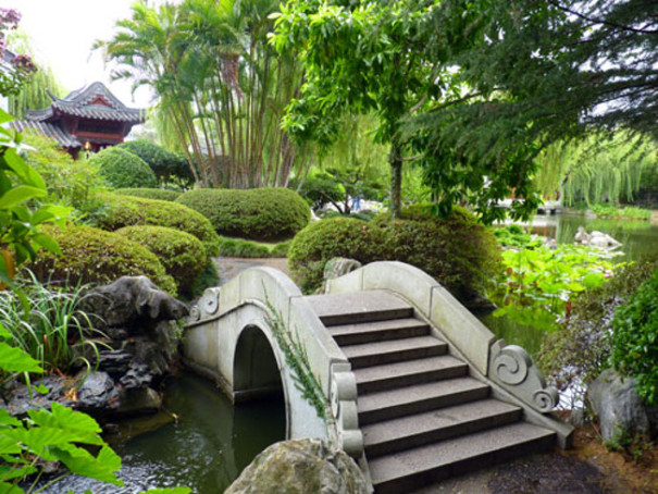 Shots from sydney 39 s chinese garden of friendship reveal a for Garden pond design books