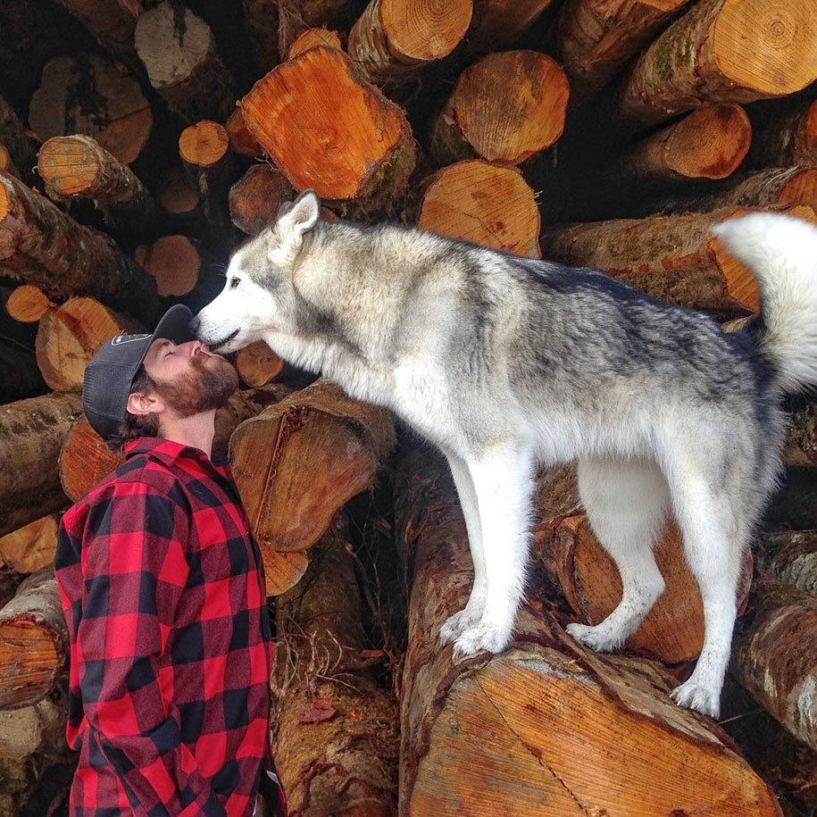 dog-nature-photography-loki-wolfdog-kelly-lund-30