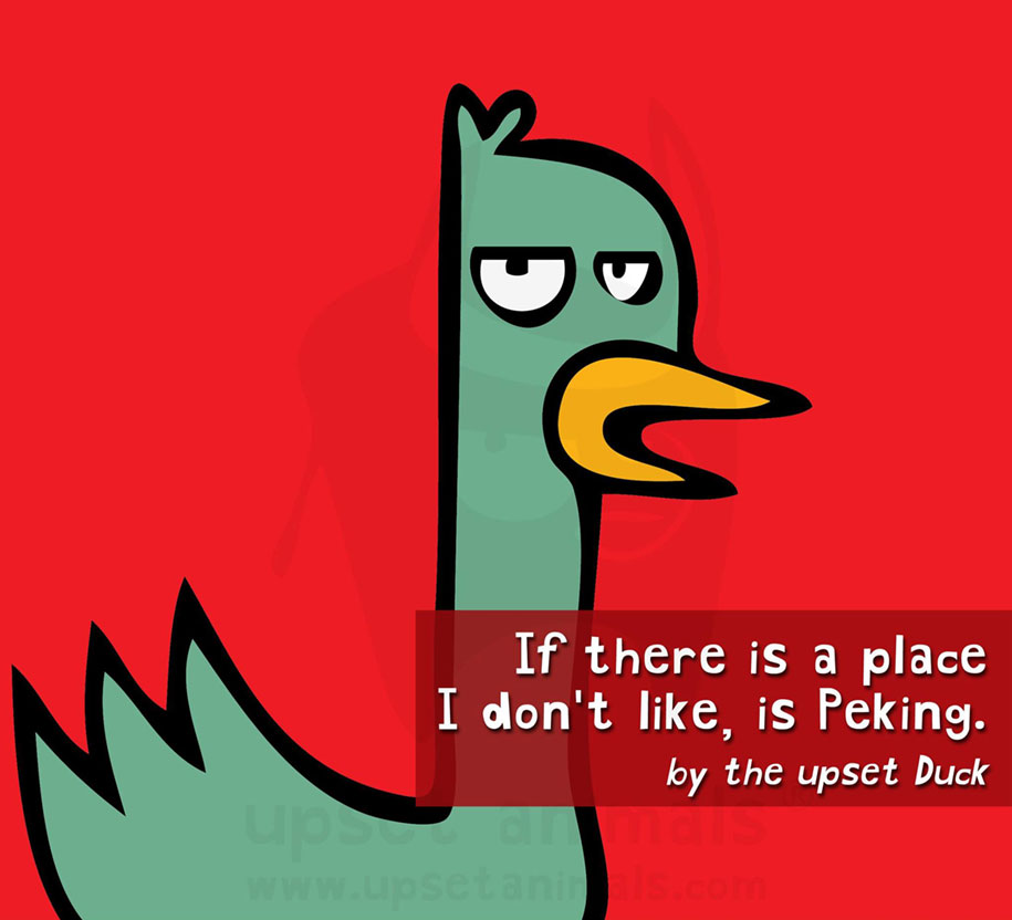 funny-problems-illustration-upset-animals-ricardo-cabrita-9