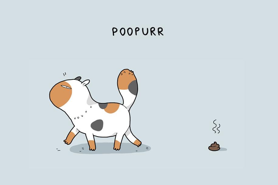 animal-illustrations-12-types-cats-lingvistov-10