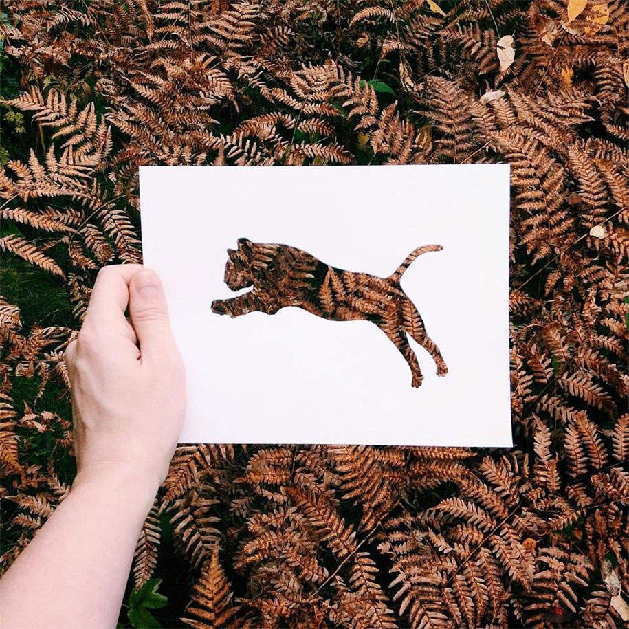 animal-paper-cutout-silhouettes-nikolai-tolstyh -11