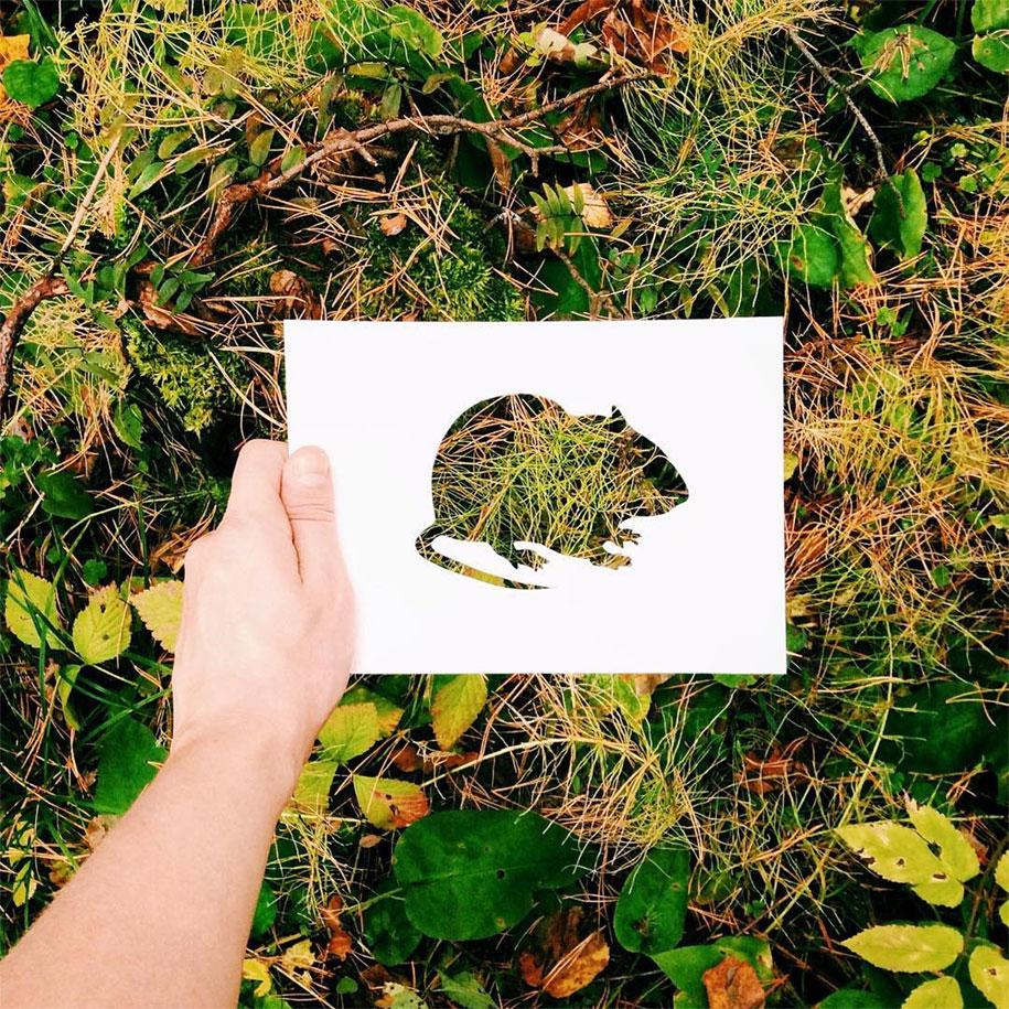 animal-paper-cutout-silhouettes-nikolai-tolstyh -12