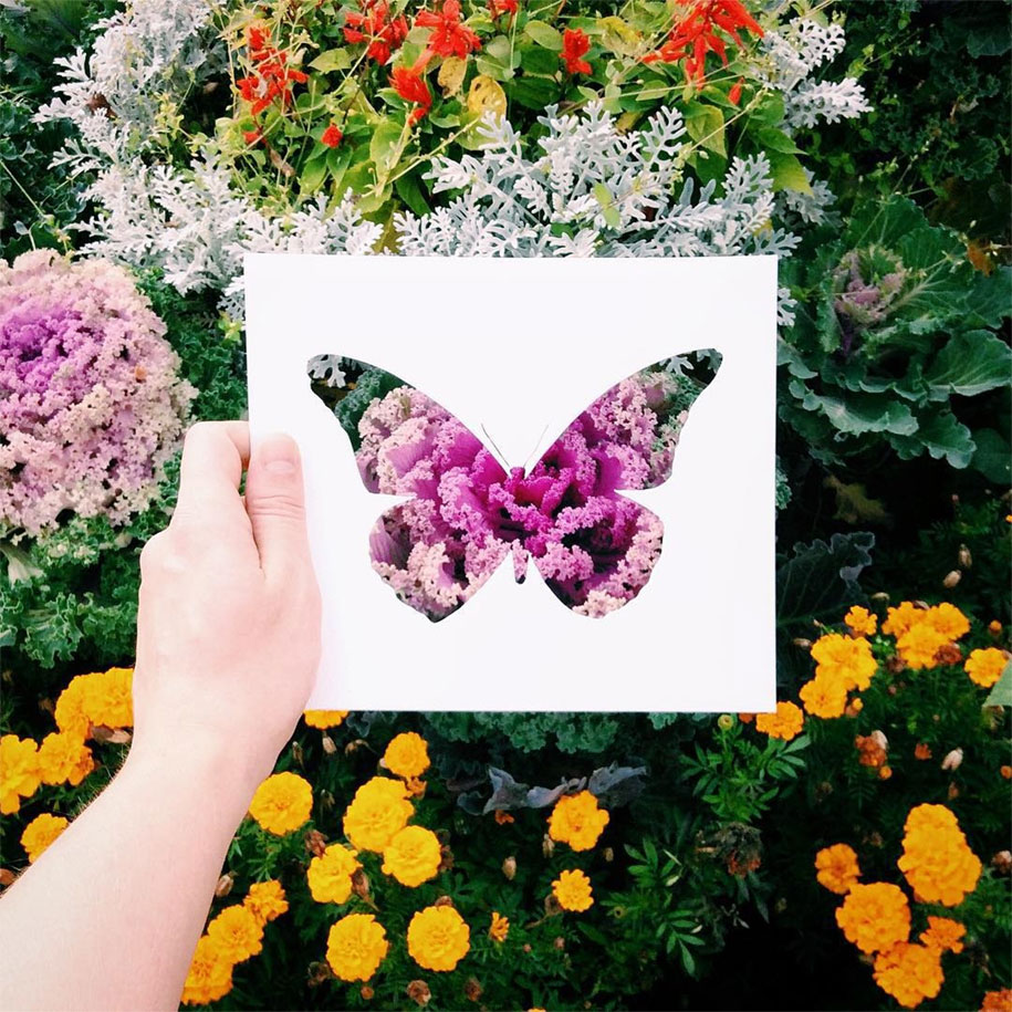 animal-paper-cutout-silhouettes-nikolai-tolstyh -8