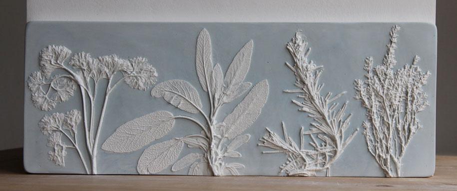 artificial-plaster-cast-flower-fossils-rachel-dein-7