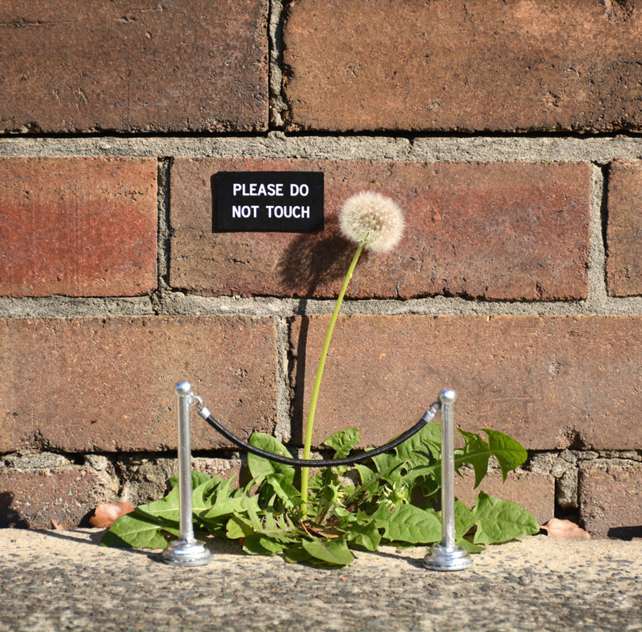 funny-outdoor-urban-sign-jokes-miguel-marquez-australia-7