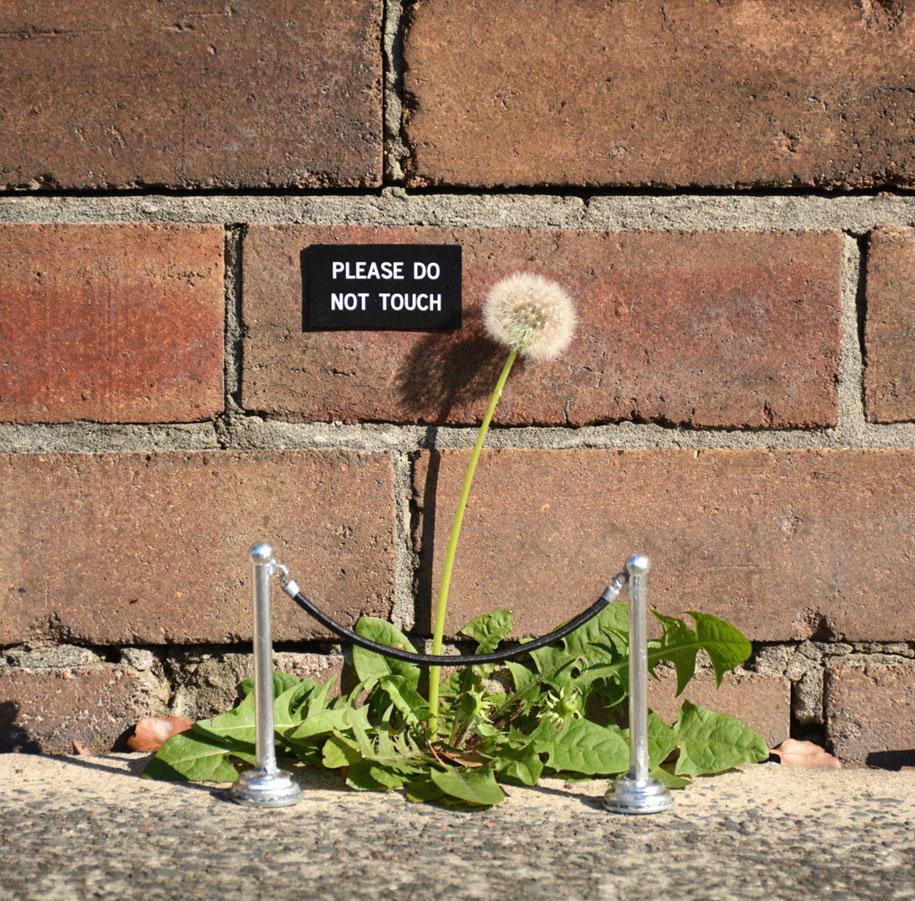 funny-outdoor-urban-sign-jokes-miguel-marquez-australia-7