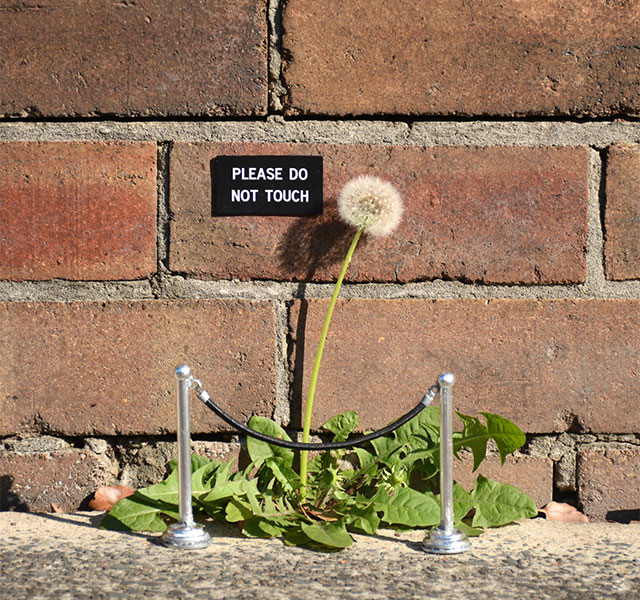Artist Leaves Funny Signs On Streets For People To Find | DeMilked
