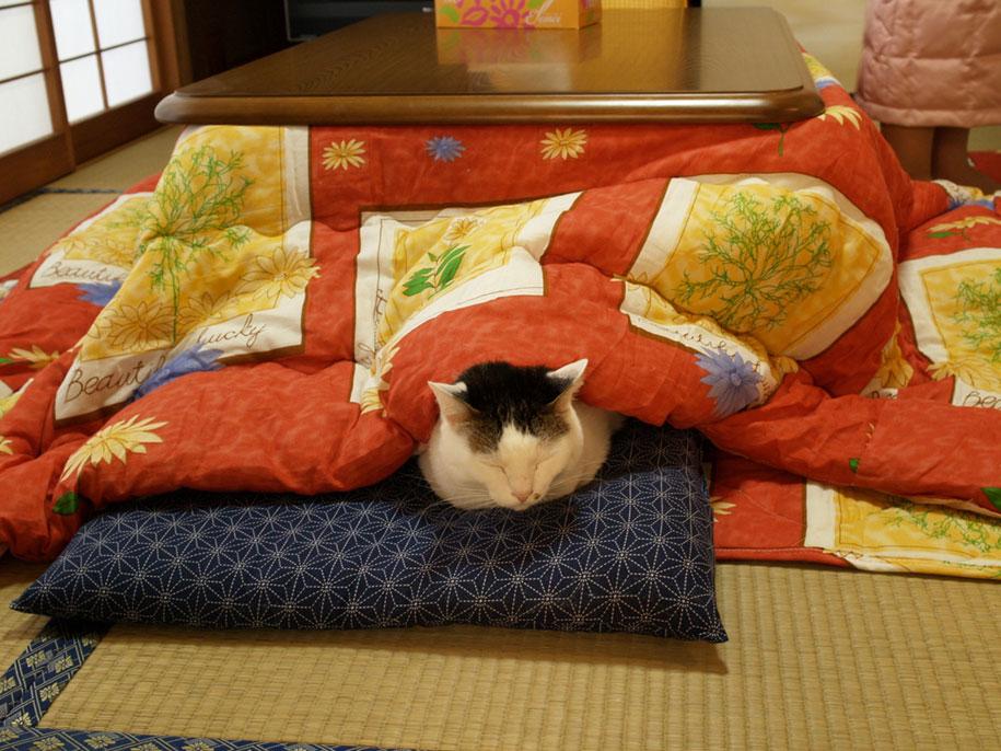 heating-table-bed-kotatsu-japan-13