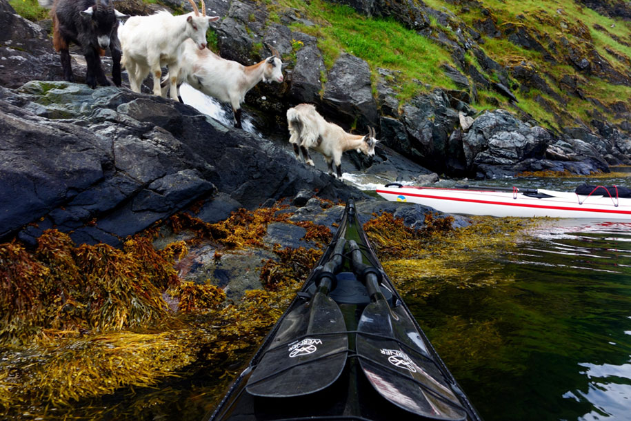 nature-travel-kayak-photography-fjords-tomasz-furmanek-norway15