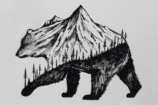 Gallery For gt Cool Black And White Drawings Of Animals