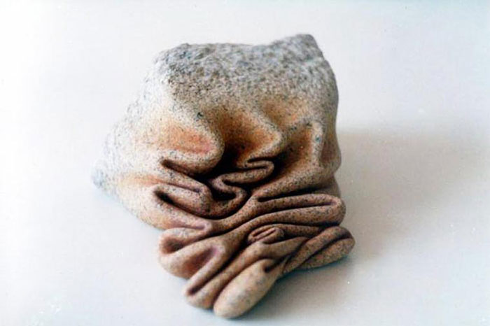 dynamic-plastic-organic-rocks-jose-manuel-castro-lopez-12