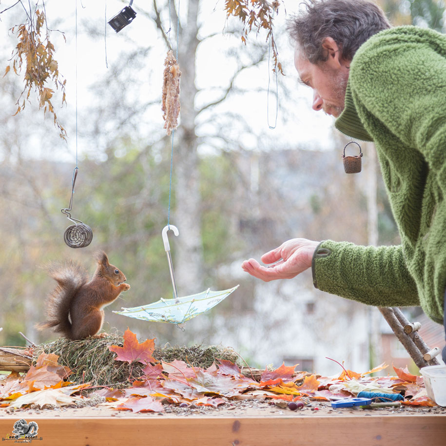 nature-animal-photography-backyard-squirrels-geert-weggen-7