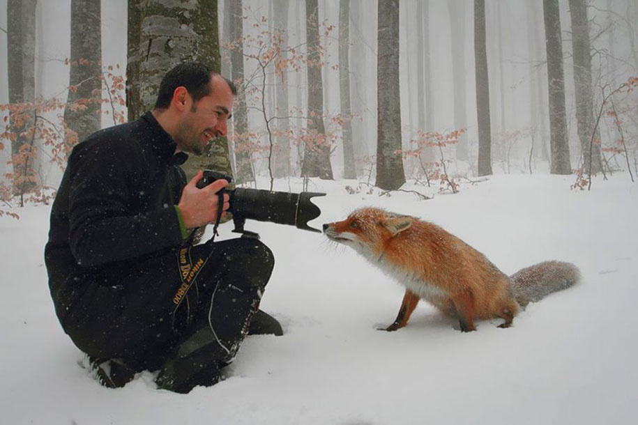 nature-photographer-behind-scenes-animals-16