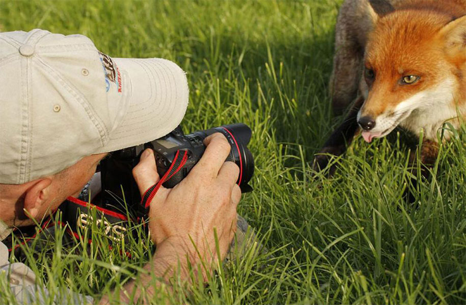 nature-photographer-behind-scenes-animals-18