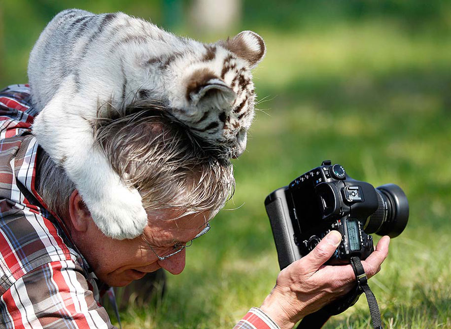 nature-photographer-behind-scenes-animals-28