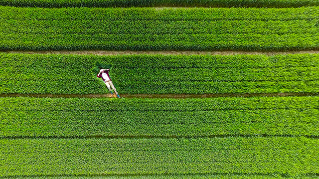 10 Best Drone Pictures Taken In 2015