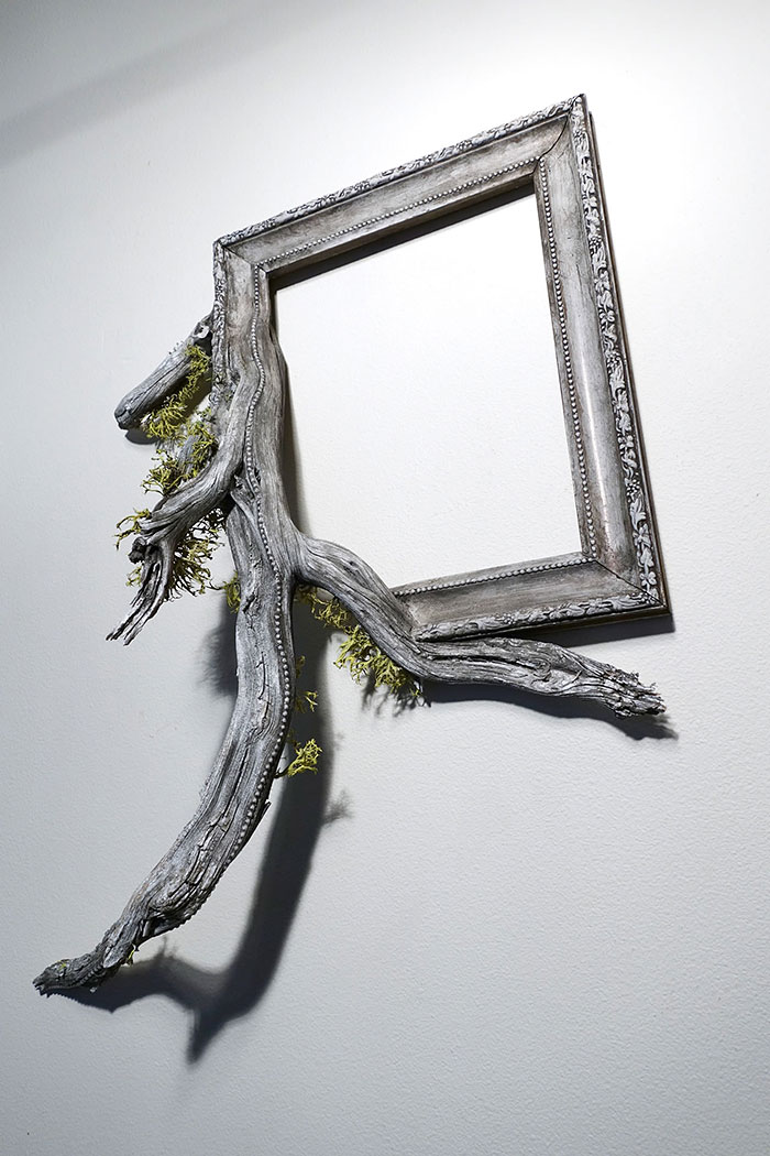 branches-frames-fusion-wood-darryl-cox-53