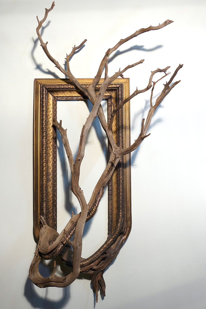 branches-frames-fusion-wood-darryl-cox-80