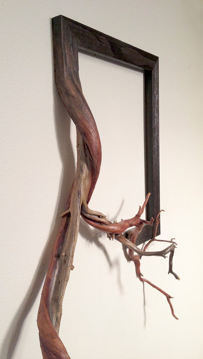 branches-frames-fusion-wood-darryl-cox-94
