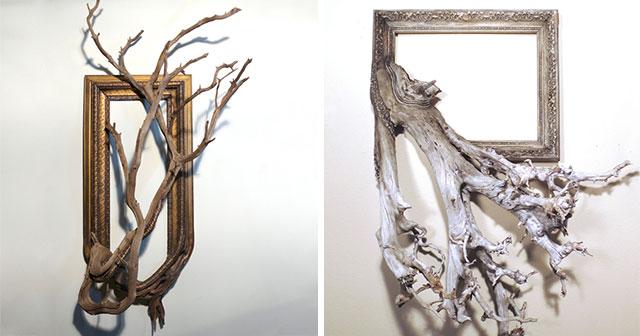 Picture Frames Connected With Nature By Darryl Cox