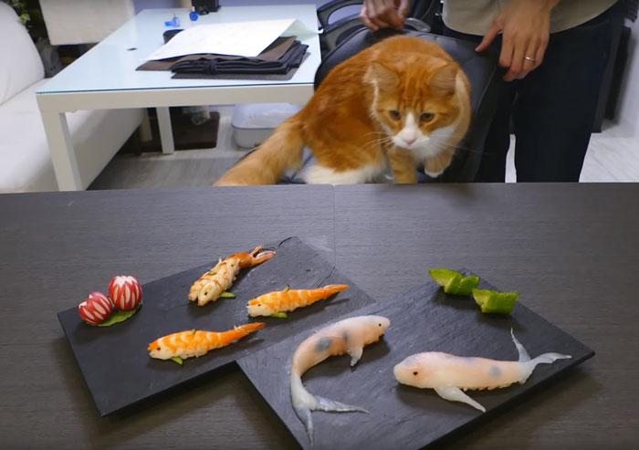 real-life-swimming-koi-sushi-tutorial-junskitchen-6