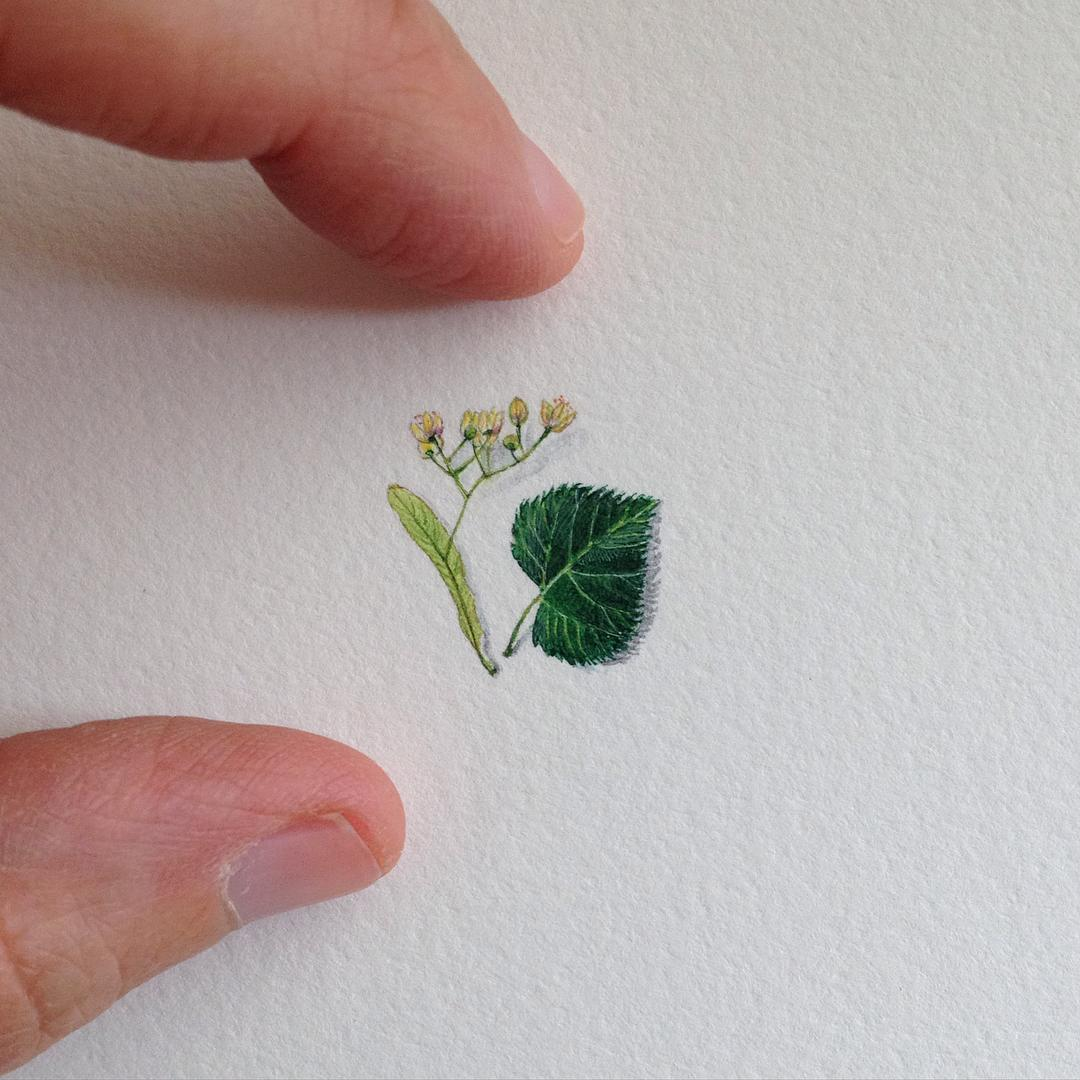 daily-miniature-paintings-brooke-rothshank-15