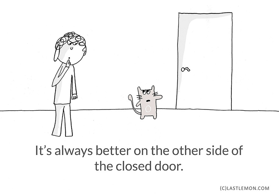 illustrations-21-lessons-cats-lisa-swerling-ralph-lazar-20
