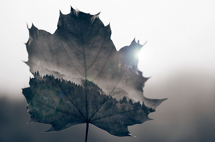 inspiring-best-multiple-exposure-photos-alessandro-dallafina-500px-3