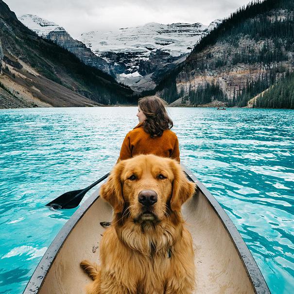 travelling-dog-aspen-hunter-lawrence-14